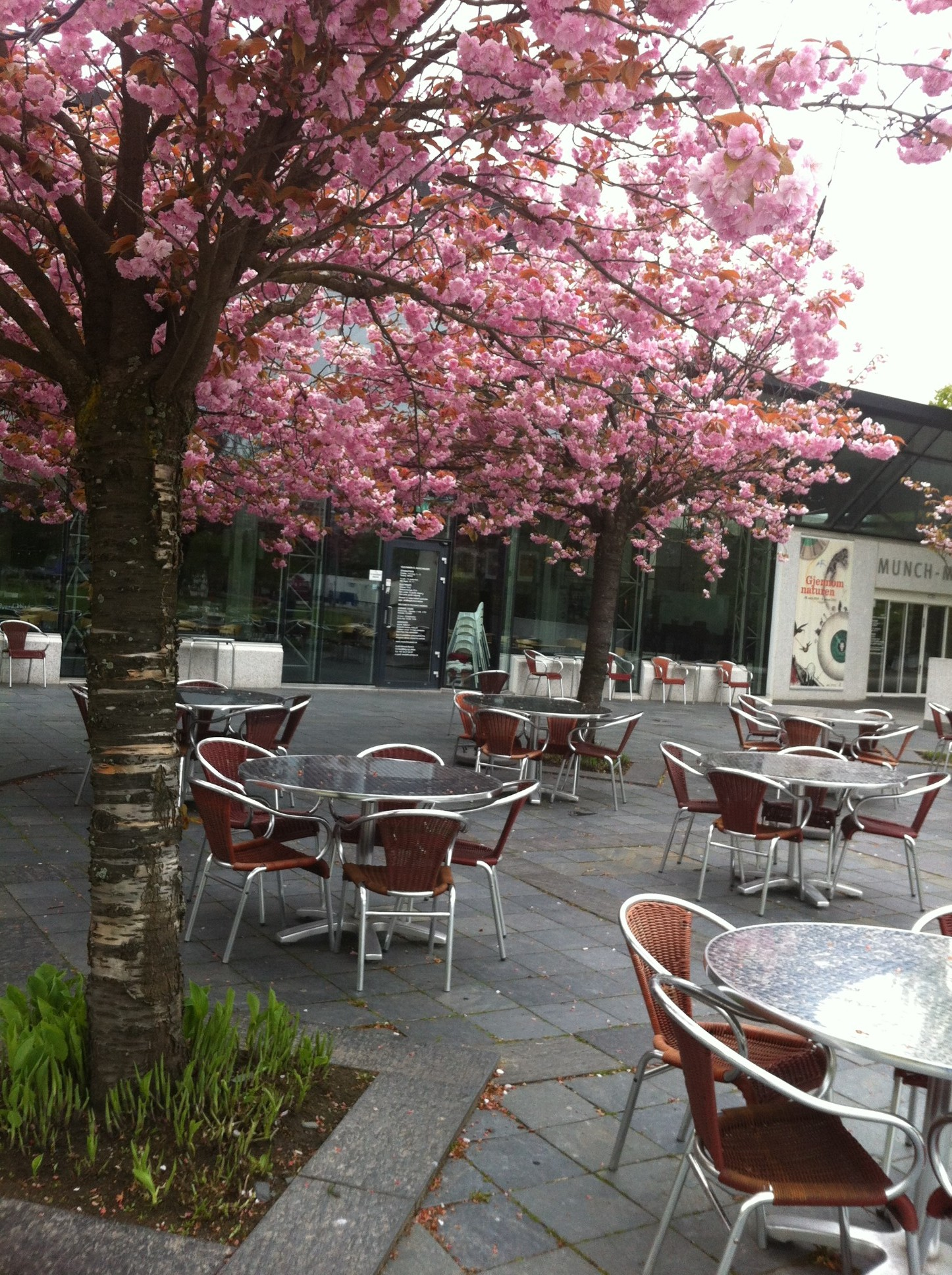 Kaffepause på Munch-museet vurderes