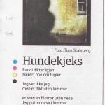Tredagers i Dagbladet