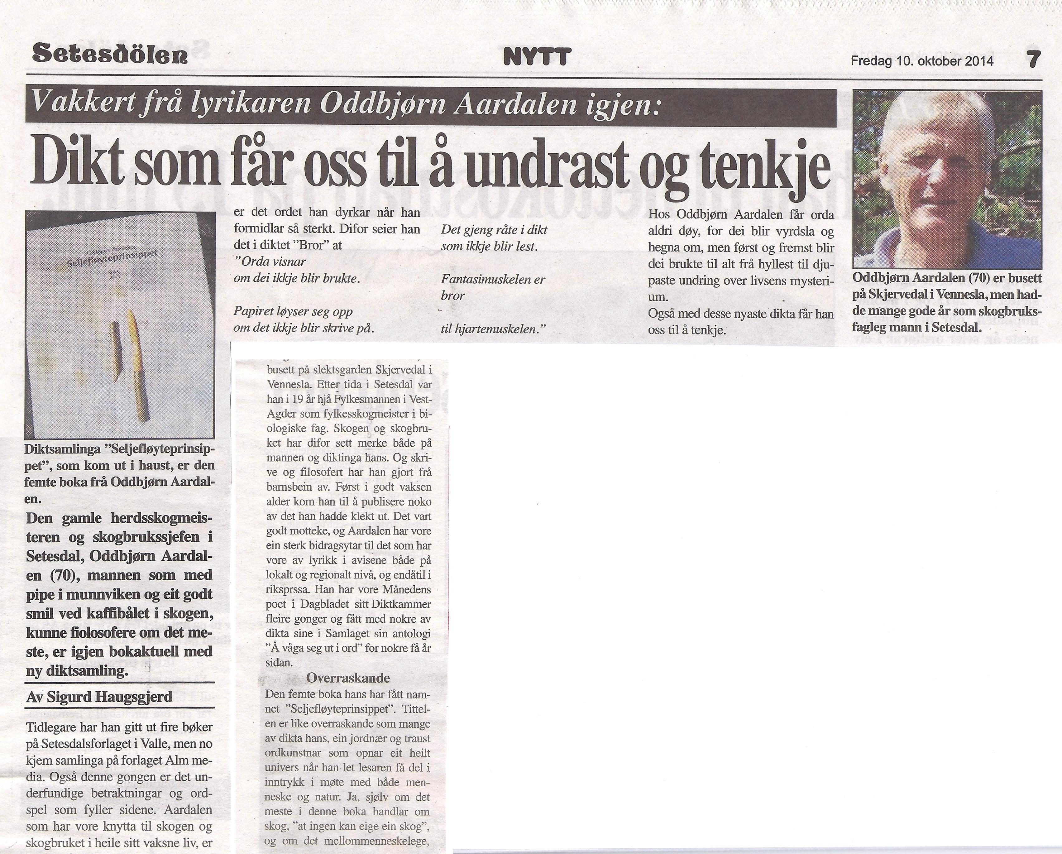 Omtale av Seljefløyteprinsippet i Setesdølen